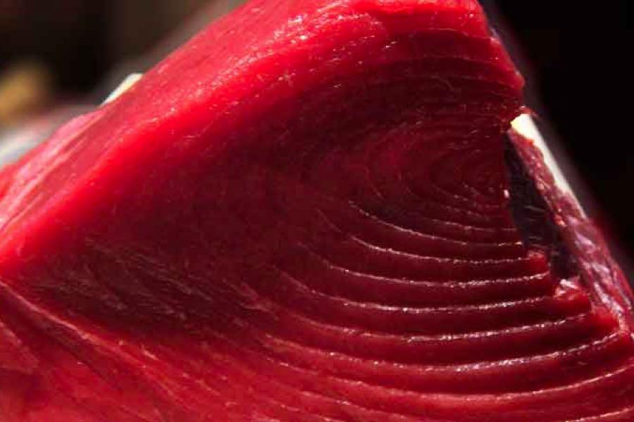 auradaze-japanese-sushi-deli-royal-leamington-spa-darren-yates-menu-sushi-tuna-nigri